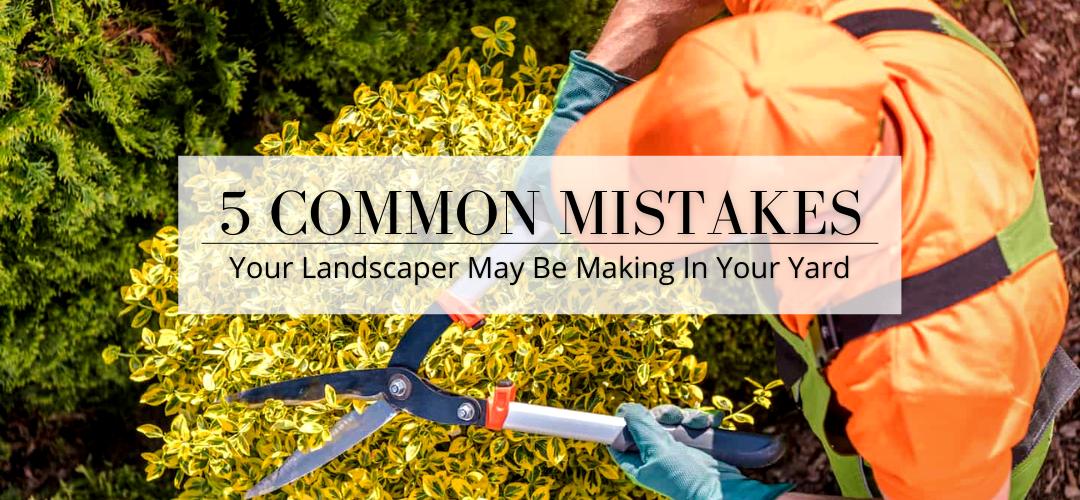 landscaper mistakes header