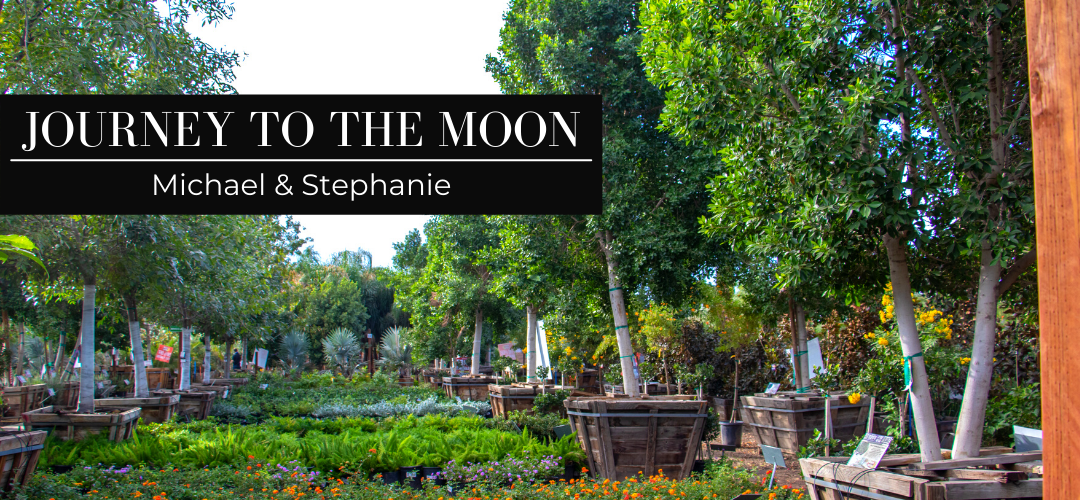 Journey to the Moon: Michael & Stephanie