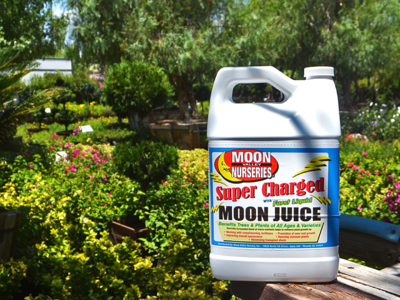 super charged moon juice
