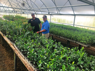 Moon Valley Nurseries greenhouse at farm