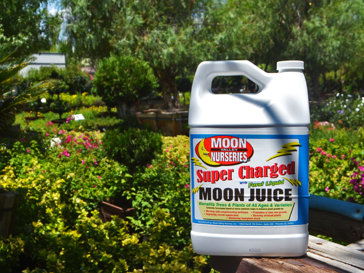 Super Charged Moon Juice™