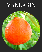 Mandarin Tangerine