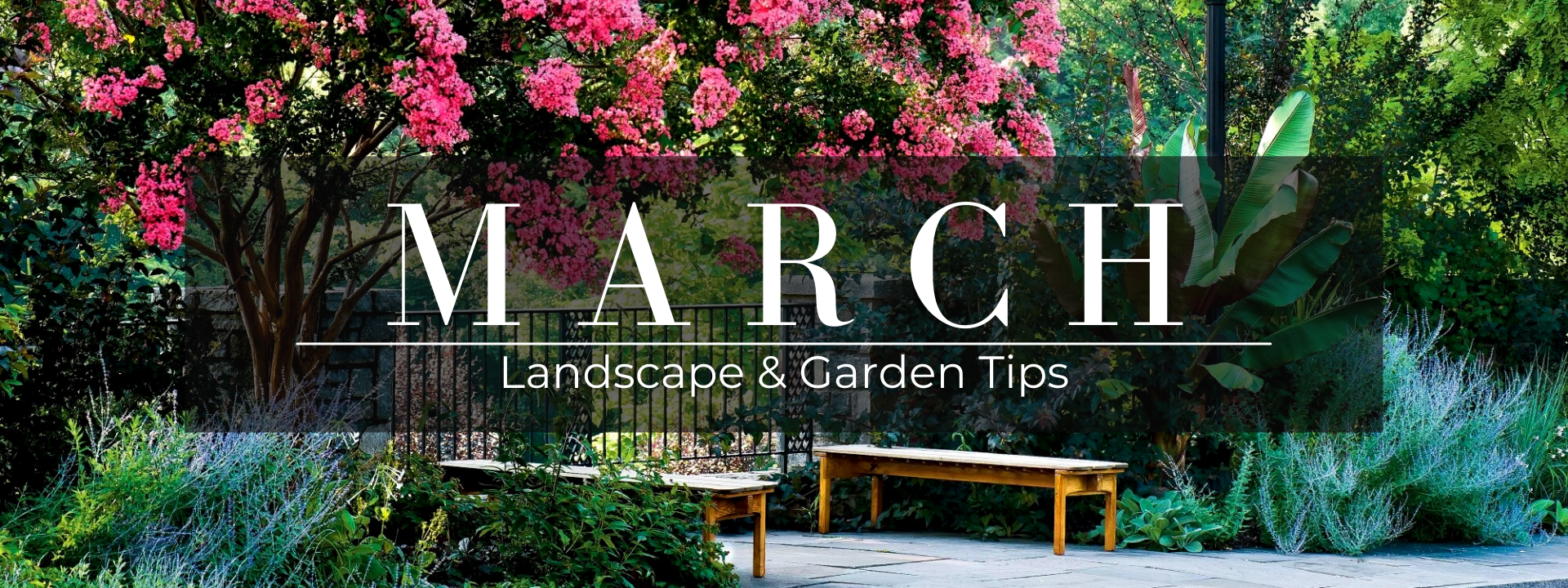March landscape and garden tips