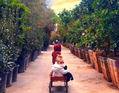 Children with Wagon at Moon Valley Nurseries