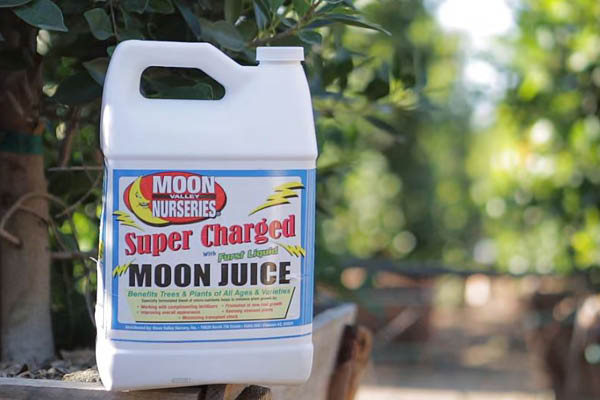 bottle of moon juice moon valley nurseries