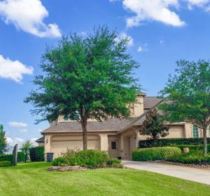 Texas Landscape Live Oak