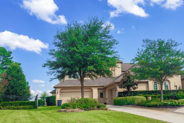 Texas Live Oak Landscape-1