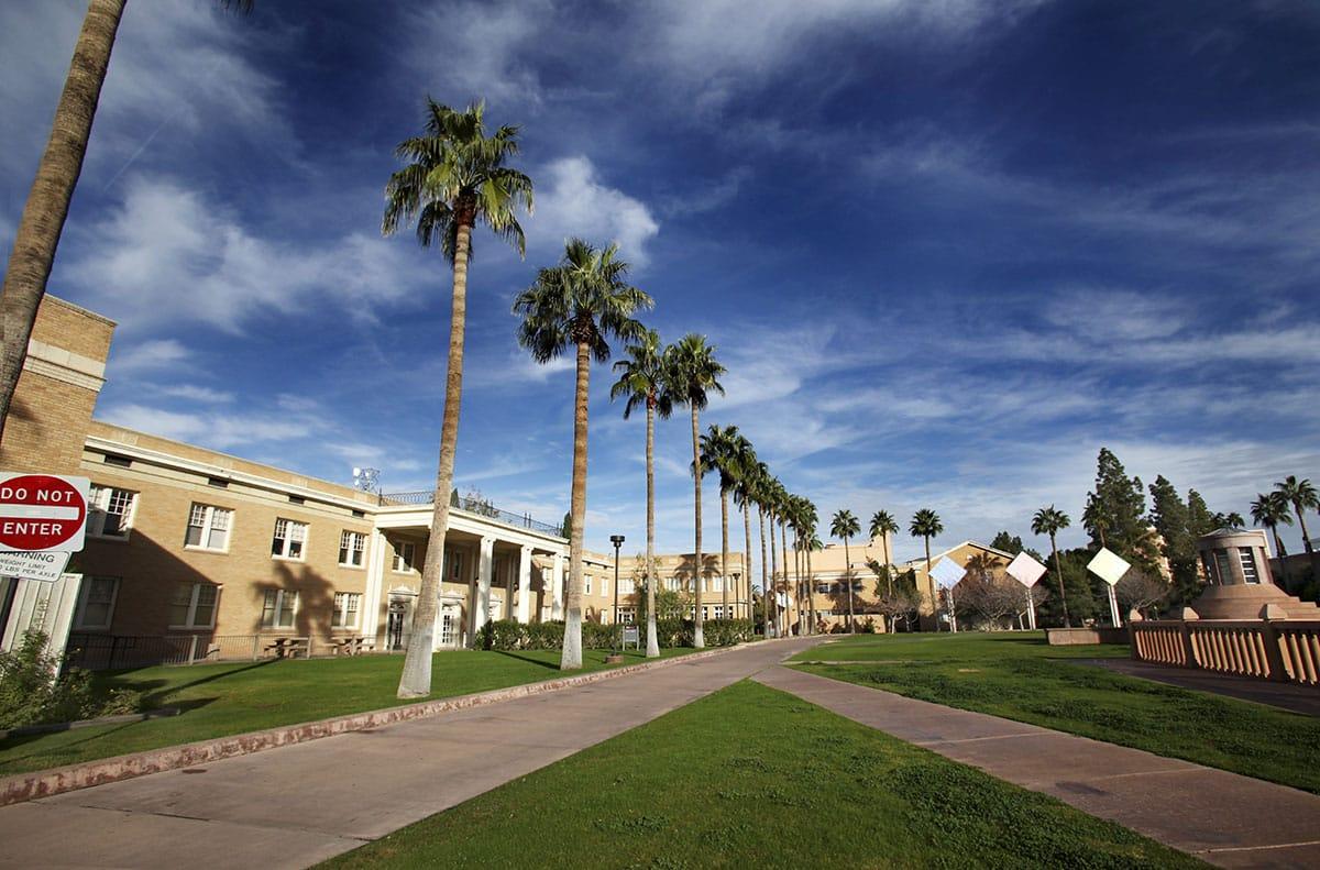 AZ_campus_path_palms