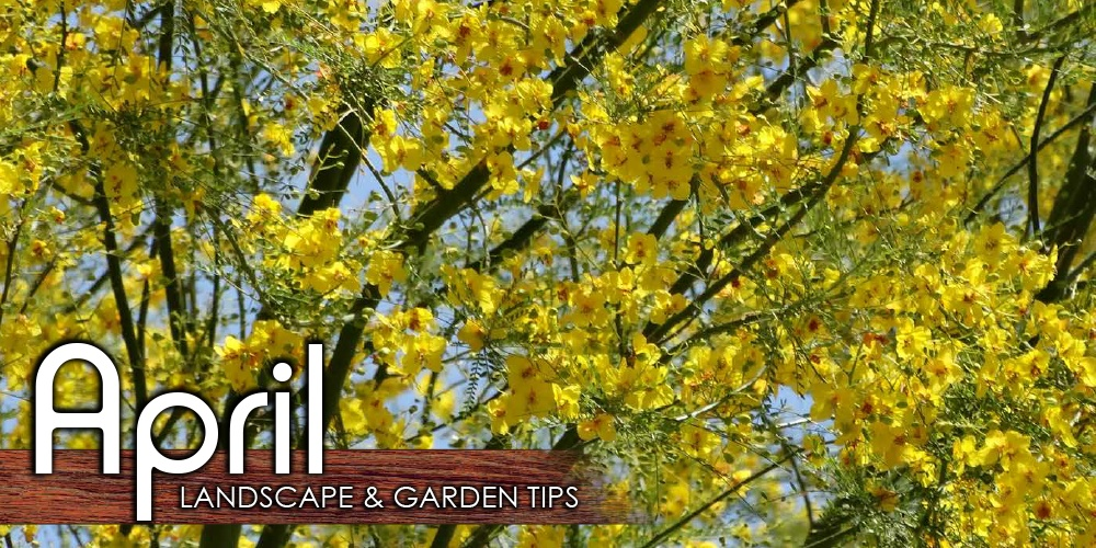 April_Landscape_Garden_Tip