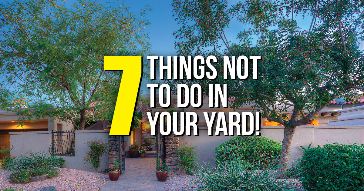 BLOG Things NOT to Do in Your Yard AZ NV