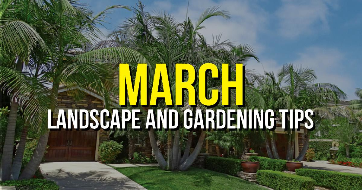 BLOG march Landscape Tips CA