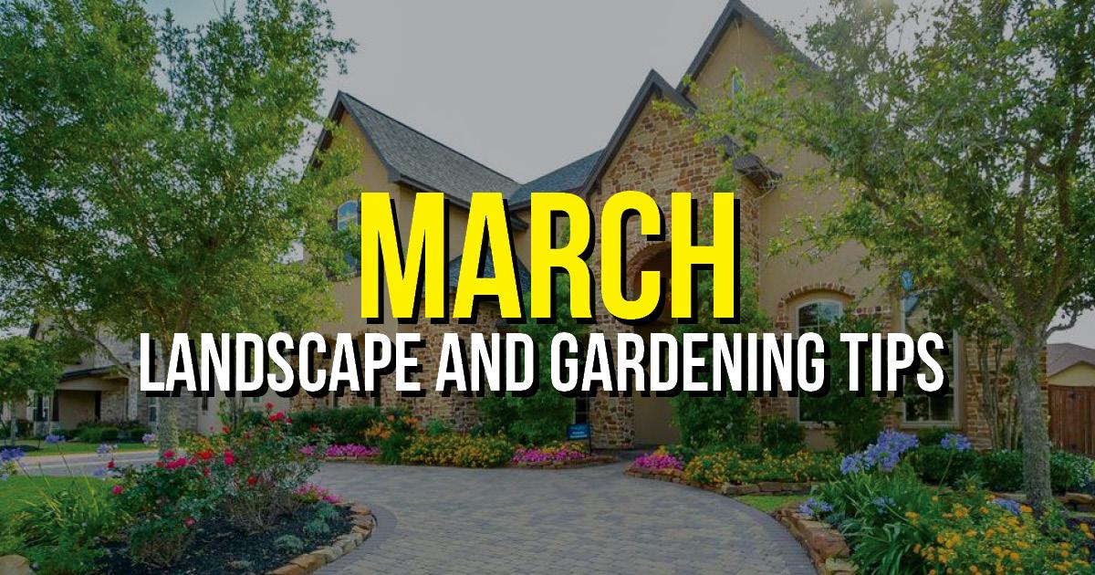 BLOG march Landscape Tips TX