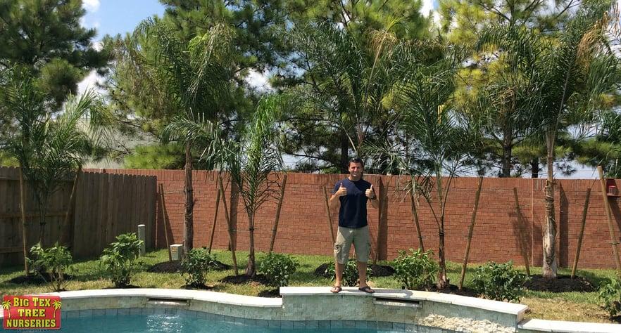 blog_main_pic_trees_plants_gift.jpg