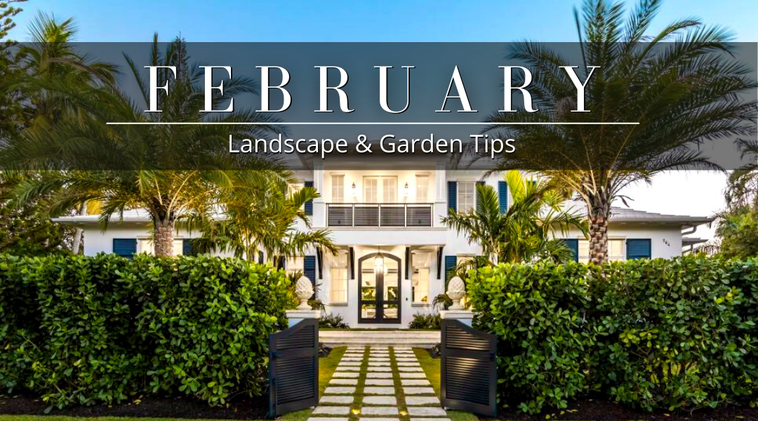 February Landscape and Garden Tips