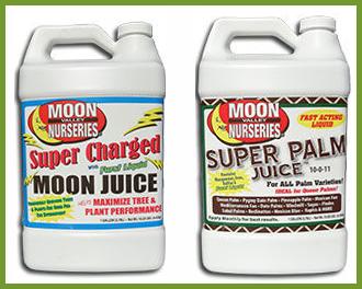 palm_fertilizers