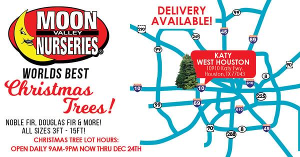 LINKEDIN Tree Lot Maps TX