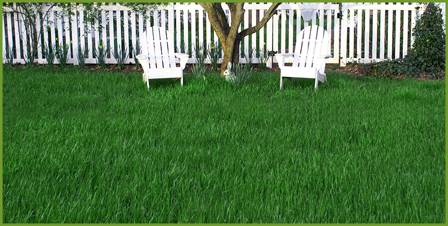 spring_lawn_care