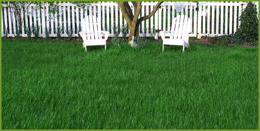 Lawn.png