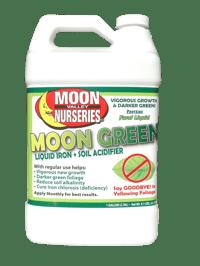 MOON GREEN JUG