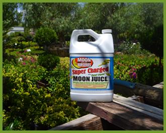 Moon-Juice-1.png