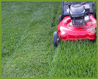 winter_lawn_grass_mowing