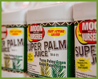 Palm-Juice-1.png