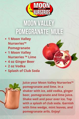 Pomegranate Mule