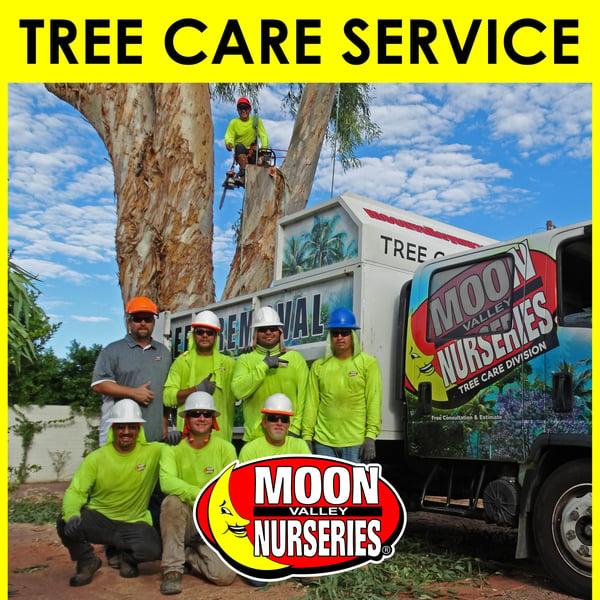 tree care, moon valley nurseries