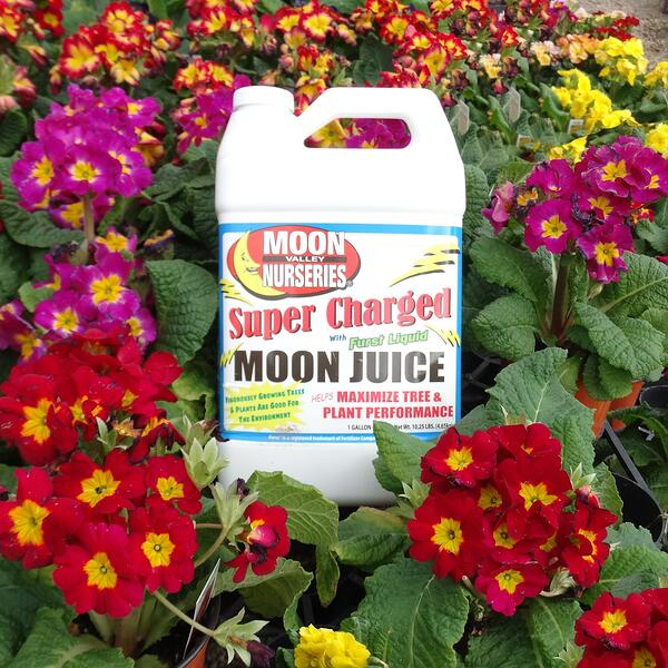 moon juice, moon valley nurseries, fertilizer product