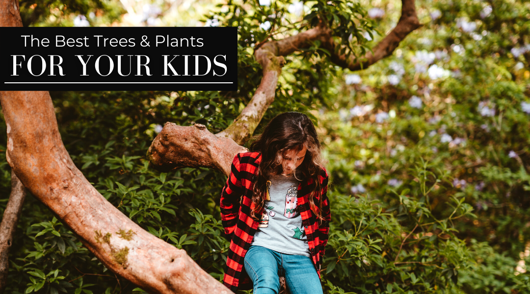 The Best Trees and Plants for Your Kids