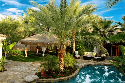 Tropical backyard design with pool