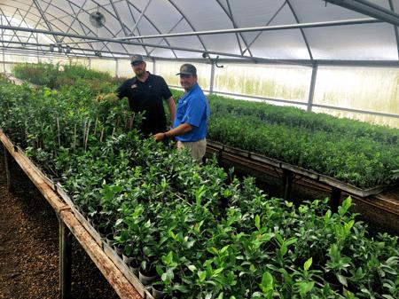 Farmgrowing