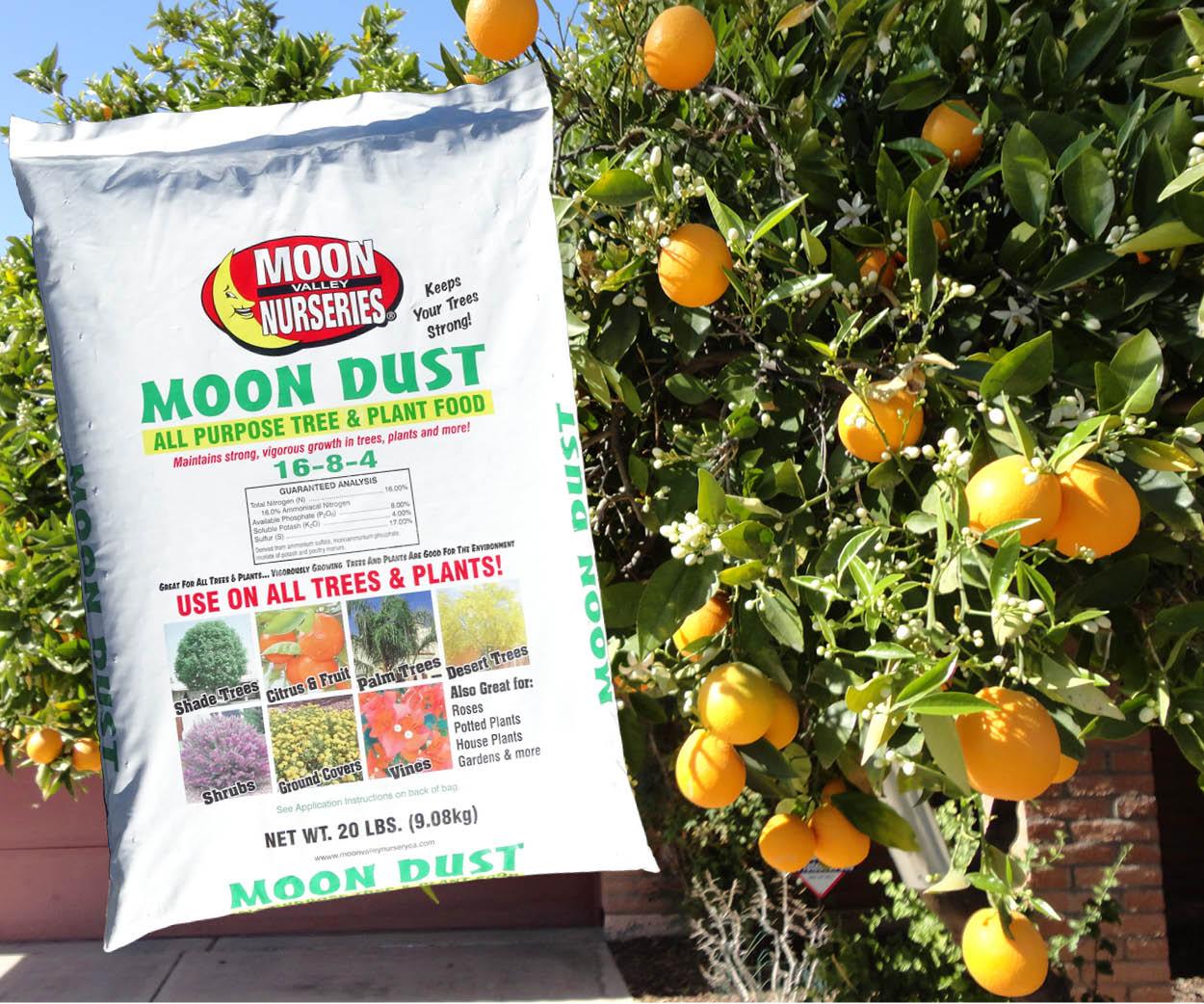 moon_dust