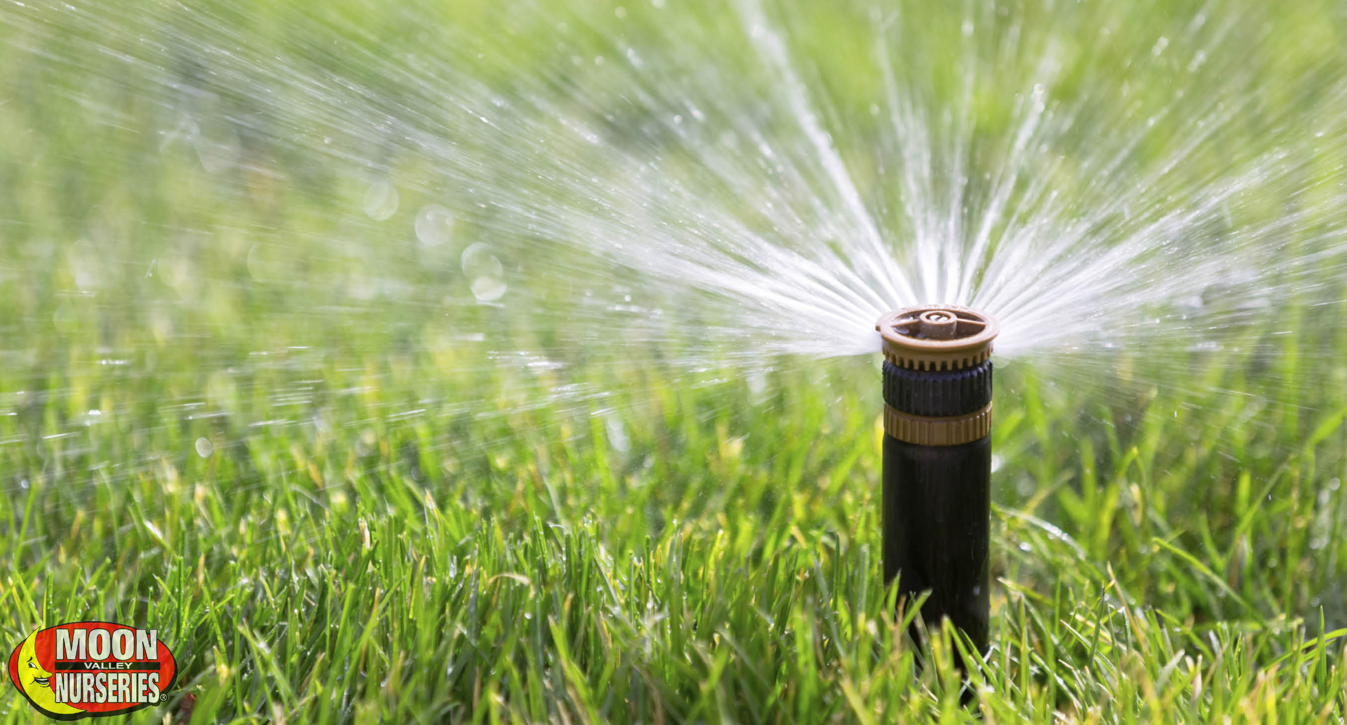az_irrigation_blog_pic