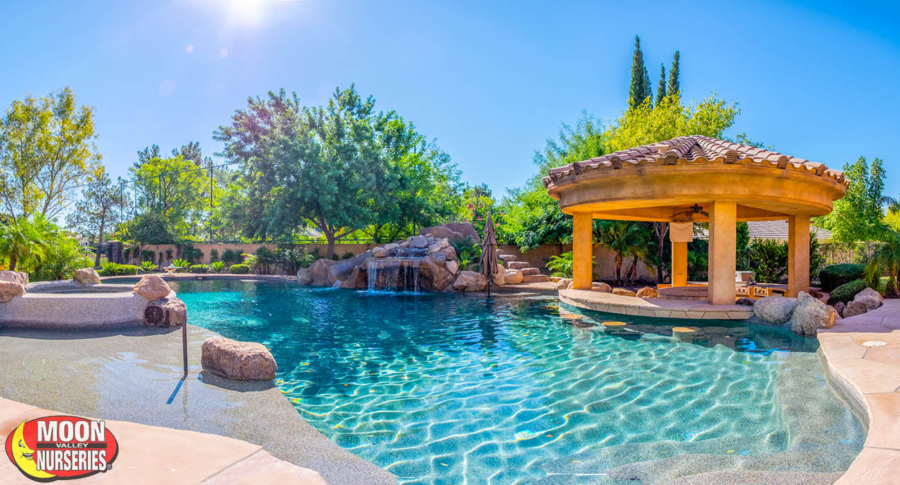 blog_main_pic_landscaping_around_pools_CA_TX