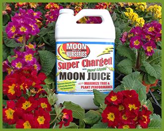 moon-juice-3.png