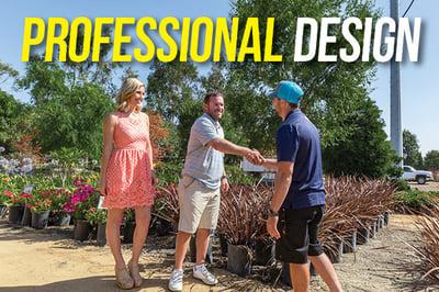 professional design