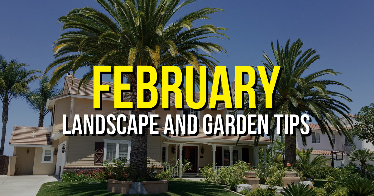 BLOG Feb Landscape Tips
