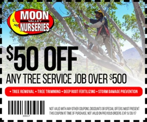 moon valley nurseries, arizona, phoenix, mesa, scottsdale, cave creek, gilbert, tempe, chandler, glendale, surprise, peoria