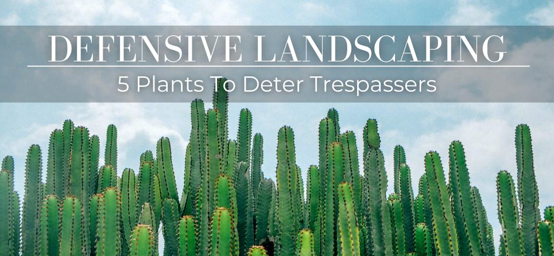 Defensive landscaping header