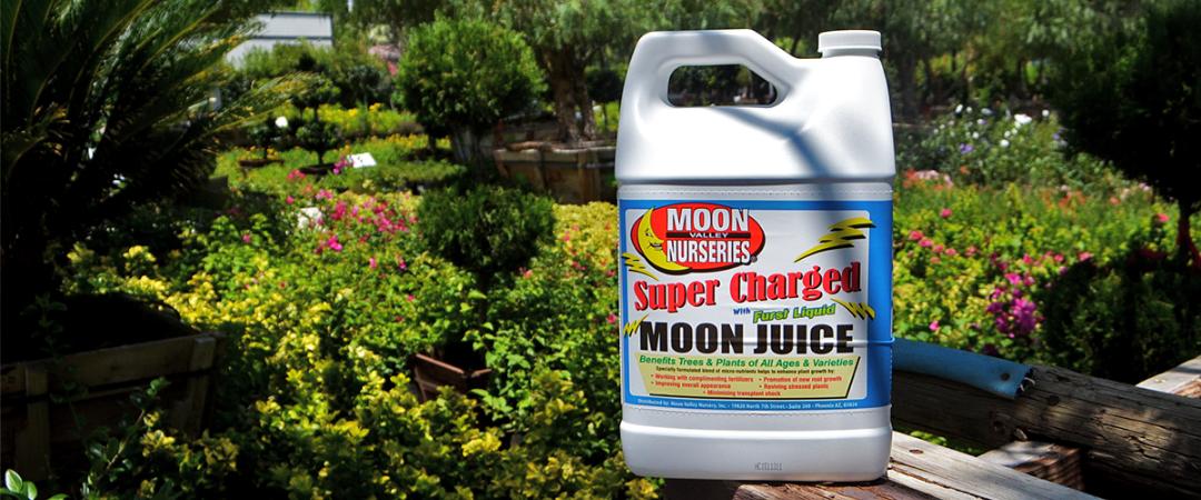Moon juice plant food at Moon Valley Nurseries