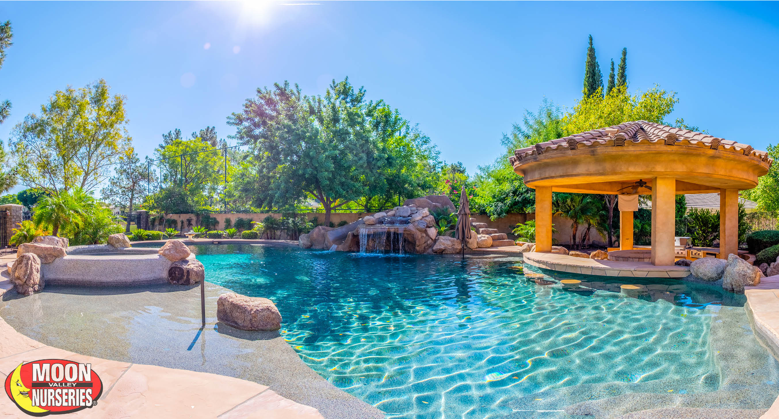 Everyone Enjoys A Nice Refreshing Dip In The Pool During Our Hot Arizona Summers And We Can Help Make That Area Even More Enjoyable By Adding Trees